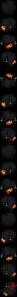 haxus-black-head-edit